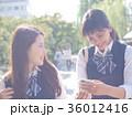 女子高生 下校 修学旅行 36012416