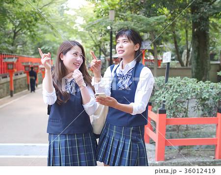 スマホで行き先を調べる女子高生 京都・修学旅行 36012419