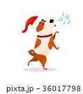 動物 わんこ 犬のイラスト 36017798