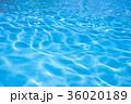 水面 紋様 キラキラの写真 36020189