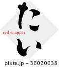 たい・タイ・鯛(筆文字・手書き) 36020638