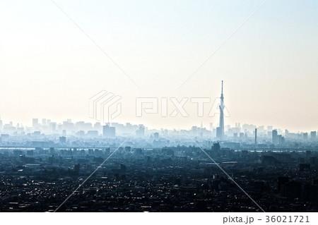 高層ビルと東京スカイツリー 36021721