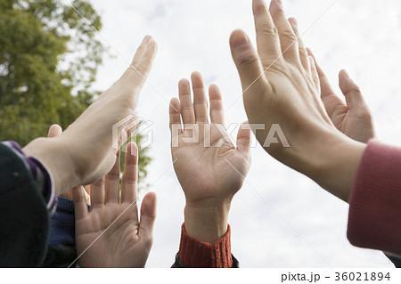 空に向かって手を伸ばす女性手元 ハイタッチ 36021894
