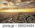 Paris rooftop 36024484