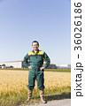 農家の男性 36026186