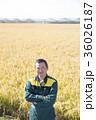 農家の男性 36026187