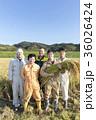 農業集合写真 36026424