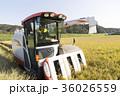 コンバインでの稲刈 36026559