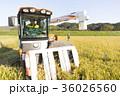 コンバインでの稲刈 36026560