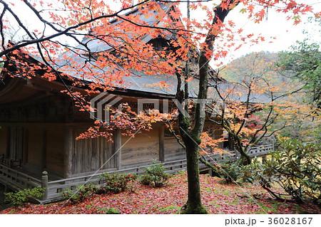 若狭神宮寺の秋景色 36028167