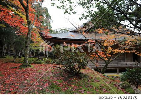 若狭神宮寺の秋景色 36028170