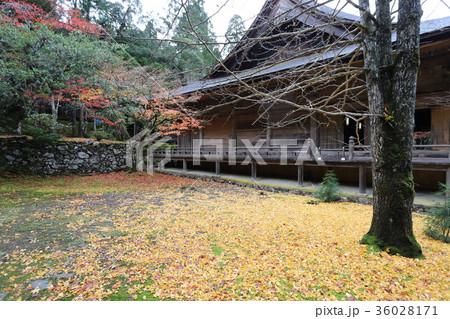 若狭神宮寺の秋景色 36028171
