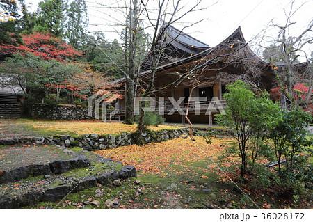 若狭神宮寺の秋景色 36028172
