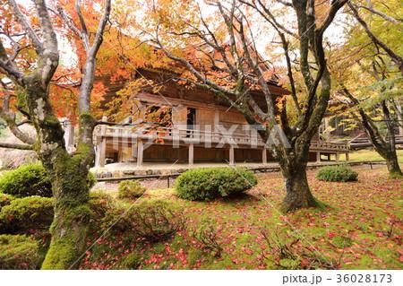 若狭神宮寺の秋景色 36028173