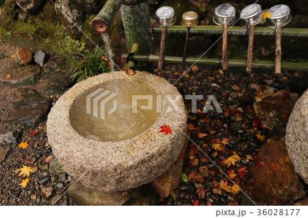 若狭神宮寺の秋景色 36028177