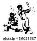 野球 36028687