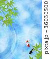 和を感じる背景素材 (金魚、水面、青紅葉) 36030500