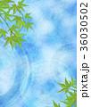 和を感じる背景素材 (水面、青紅葉) 36030502