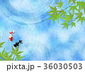 和を感じる背景素材 (金魚、水面、青紅葉) 36030503