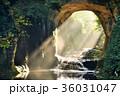 滝 濃溝の滝 亀岩の洞窟の写真 36031047