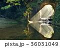 滝 濃溝の滝 亀岩の洞窟の写真 36031049