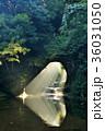 滝 濃溝の滝 亀岩の洞窟の写真 36031050