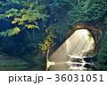 滝 濃溝の滝 亀岩の洞窟の写真 36031051
