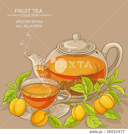 apricot tea illustration 36032477