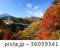 九重夢大吊橋 紅葉 秋の写真 36039341