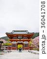 勝尾寺 春 大阪府箕面市 2017年4月撮影 36041708