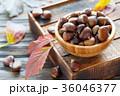 木製 クリ 栗の写真 36046377