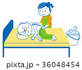 介護 清拭 ホームヘルパーのイラスト 36048454