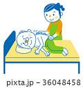 介護 清拭 ホームヘルパーのイラスト 36048458