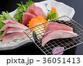 炙り 刺身 和食の写真 36051413