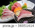 炙り 刺身 和食の写真 36051414