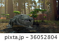 ワニ 36052804