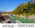 長瀞渓谷 紅葉 秋の写真 36055440