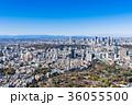 東京シティビュー 新宿副都心と原宿・青山周辺の町並み 36055500