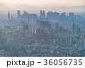 都市風景 ビル街 東京の写真 36056735