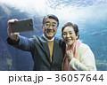 老夫婦と海 36057644