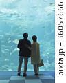 老夫婦と海 36057666