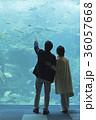老夫婦と海 36057668