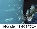 老夫婦と海 36057710