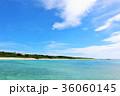 青空 海 沖縄の写真 36060145