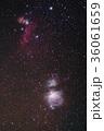 オリオン座中心部 36061659