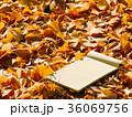 あき 秋 デザインの写真 36069756
