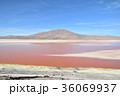 ボリビア 湖 風景の写真 36069937