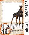 年賀状 戌年 犬のイラスト 36072498