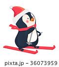 ぺんぎん ペンギン ベクタのイラスト 36073959