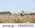 30代 季節 東洋人の写真 36083935